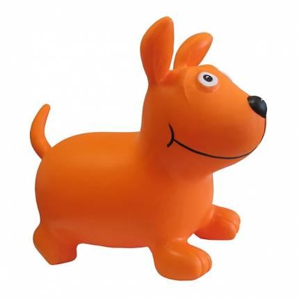 Тренажёр-игрушка Рыжий Пёс KINERAPY Orange Dog RК700